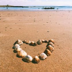 silver-bay-holiday-village-anglesey-shells-beach
