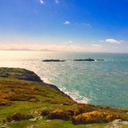 silver-bay-holiday-village-luxury-lodges-anglesey-coastline-summer